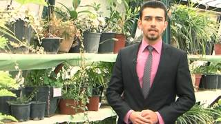 School of Agriculture - Horticulture Department